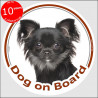 "Black longhaired Chihuahua, circle sticker ""Dog on board"" 15 cm car"