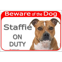 Portal Sign red 24 cm Beware of the Dog, red fawn Staffie on duty, gate plate Staffordshire Bull Terrier