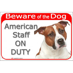 Portal Sign red 24 cm Beware of the Dog, red fawn and white Amstaff on duty, gate plate placard American Staffordshire Terrier