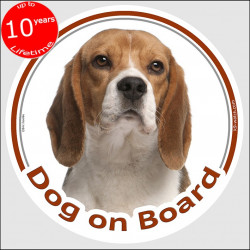 "Circle sticker ""Dog on board"" 15 cm, Beagle Head, decal adhesive car label Elisabeth"