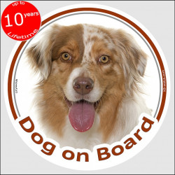 "Circle sticker ""Dog on board"" 15 cm, red merle Australian Shepherd Head, decal Aussie adhesive label car"