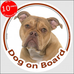 "Circle sticker ""Dog on board"" 15 cm, Old English Bulldog Head, decal adhesive car label"