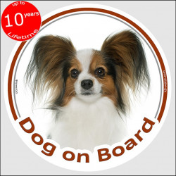 "Circle sticker ""Dog on board"" 15 cm, Continental Toy Spaniel Papillon Head, decal adhesive car label"