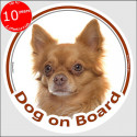 """red long hair Chihuahua, circle sticker """"Dog on board"""" 15 cm, car label"""