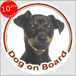 "Black & tan Pinscher , circle sticker ""Dog on board"" 15 cm, car decal label adhesive Pinsher"