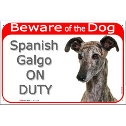 """Red Portal Sign """"Beware of the Dog, Spanish Galgo on duty"""" gate plate, notice dog photo greyhound notice"""
