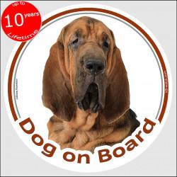 "Bloodhound, circle sticker ""Dog on board"" 15 cm, car decal label adhesive st hubert hound photo notice"