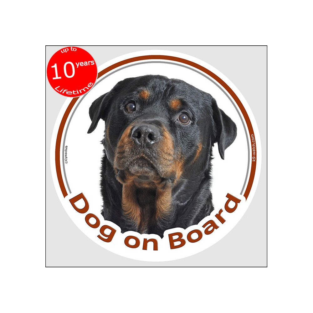 Red Polka Dot Rottweiler With Bandana Vinyl Decal Sticker ~ Various Sizes ~ Laptop Decal ~ Car Decal ~ Tumbler Decal ~ Dog Mom ~Rottie