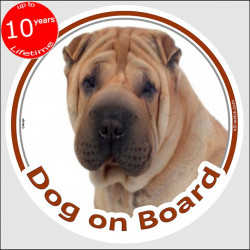 "Shar-Peï cream, circle sticker ""Dog on board"" 15 cm, car decal label A"