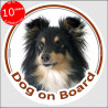 "Shetland Sheepdog tricolour, circle car sticker ""Dog on board"" 15 cm, car decal label A"