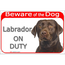 "Red Portal Sign ""Beware of the Dog, brown Chocolate Labrador retriever on duty"" 24 cm gate plate photo notice"