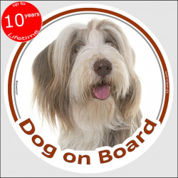 "Fawn and white Bearded Collie, circle sticker ""Dog on board"" 15 cm, car decal label adhesive photo notice highland mountain hair"