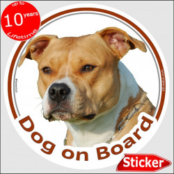 "Fawn Amstaff, circle sticker ""Dog on board"" 15 cm, car decal label Orange American Staffordshire Terrier adhesive photo notice"