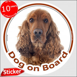 "Red English Cocker Spaniel, circle sticker ""Dog on board"" 15 cm, car decal label, Fawn British photo dog notice"