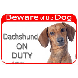 "Red Portal Sign ""Beware of the Dog, Dachshund on duty"" 24 cm, gate plate photo notice red fawn smooth hairs"