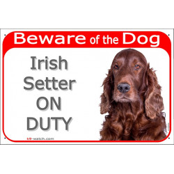 "Red Portal Sign ""Beware of the Dog, Irish red Setter on duty"" 24 cm, gate plate photo notice"
