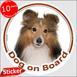 "Red Mahogany Shetland Sheepdog, circle sticker ""Dog on board"" 15 cm, car decal label adhesive photo notice"