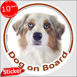 "White and red merle Aussie, circle car sticker ""Dog on board"" 15 cm, decal adhesive photo notice Australian Shepherd"