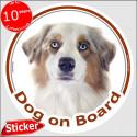 """White & red merle Aussie, circle car sticker """"Dog on board"""" 15 cm"""