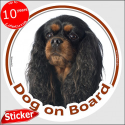 "Black and Tan Cavalier King Charles Spaniel, circle sticker ""Dog on board"" 15 cm, decal adhesive car photo notice"