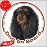 "Black & Tan Cavalier King Charles, circle sticker ""Dog on board"" 15 cm"