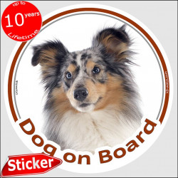 "Blue Merle Shetland Sheepdog, circle sticker ""Dog on board"" 15 cm, car decal label shepherd adhesive photo notice"