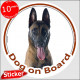"Circle sticker ""Dog on board"" 15 cm, Belgium Shepherd Malinois Head, Decal adhesive car label Belgian Sheepdog Mechelse Herder,"