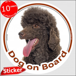 "Brown Chocolate Poodle, circle car sticker ""Dog on board"" 15 cm, decal label adhesive photo notice"