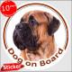 "red fawn Bullmastiff, car circle sticker ""Dog on board"" 15 cm decal label adhesive photo notice"