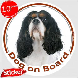 "Tricolor Cavalier King Charles Spaniel, car circle sticker ""Dog on board"" 15 cm, decal label photo notice"