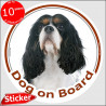 "Tricolor Cavalier King Charles, circle sticker ""Dog on board"" 15 cm"