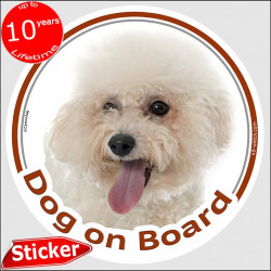 "Curly Bichon Frise Tenerife, car circle sticker ""Dog on board"" 15 cm decal label photo notice"
