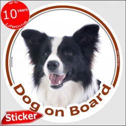 "Circle sticker ""Dog on board"" 15 cm, Black & White Border longhaired Collie decal label adhesive photo notice"