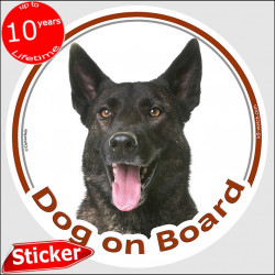 "Brindle Dutch Shepherd, circle car sticker ""Dog on board"" 15 cm decal label photo adhesive notice"