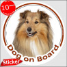 "Rough Collie, circle sticker ""Dog on board"" 15 cm, car decal label"