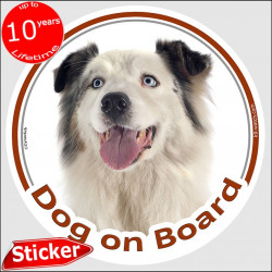 "White & Blue merle Aussie, circle car sticker ""Dog on board"" 15 cm australian shepherd decal adhesive photo notice label"
