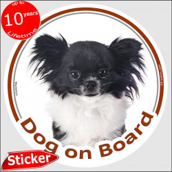 "black and white Long hair Chihuahua, car circle sticker ""Dog on board"" 15 cm, decal label adhesive photo notice"