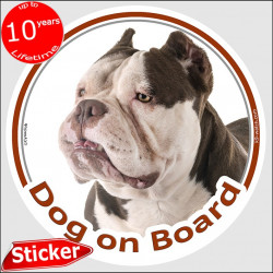 "Bicolor Brown and white American Bully, circle sticker ""Dog on board"" 15 cm, car decal label adhesive photo"