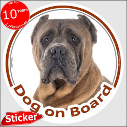 "Red brown fawn Cane Corso Italiano, car circle sticker ""Dog on board"" 15 cm decal label photo notice Mastiff"