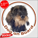 "Wirehaired Dachshund, circle car sticker ""Dog on board"" 15 cm"
