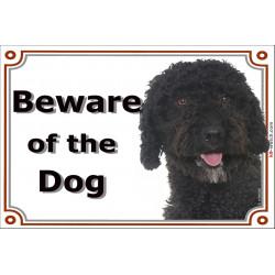 "Spanish Water Dog head, portal Sign ""Beware of the Dog"" 24 cm"