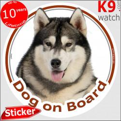 "Alaskan Malamute, car circle sticker ""Dog on board"" decal label photo notice adhesive"