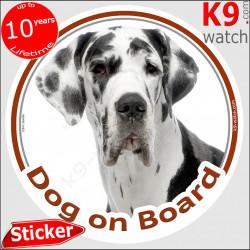 "Harlequin Great Dane, car circle sticker ""Dog on board"" decal photo label notice Deutsche Dogge, German Mastiff"